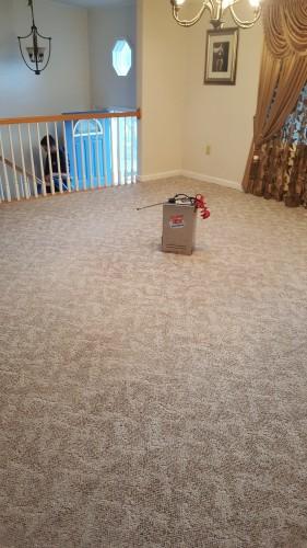 After Carpet